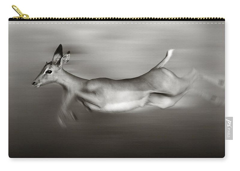 Outdoor Carry-all Pouch featuring the photograph Impala Running by Johan Swanepoel