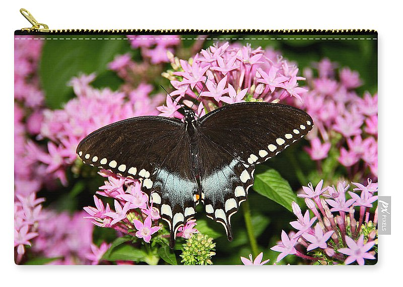 Butterfly Carry-all Pouch featuring the photograph In All Her Glory by Deb Buchanan