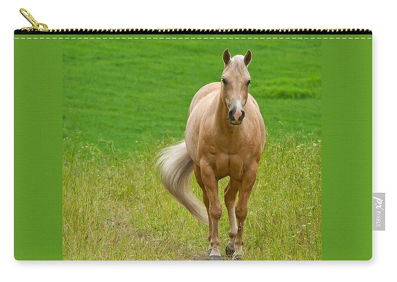 Pale Brown Horse Carry-all Pouch featuring the photograph In The Meadow by Torbjorn Swenelius