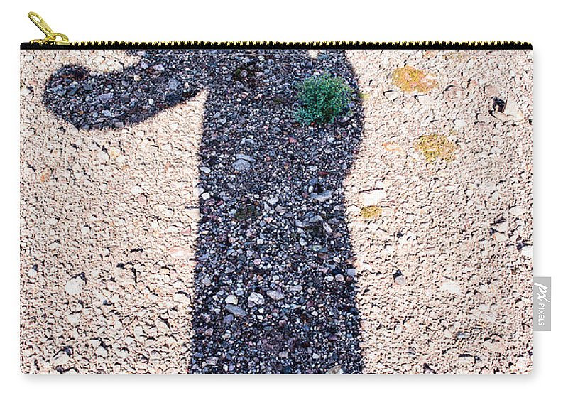 Saguaro Cactus Carry-all Pouch featuring the photograph In The Shadow Of A Saguaro Cactus by Onyonet Photo Studios