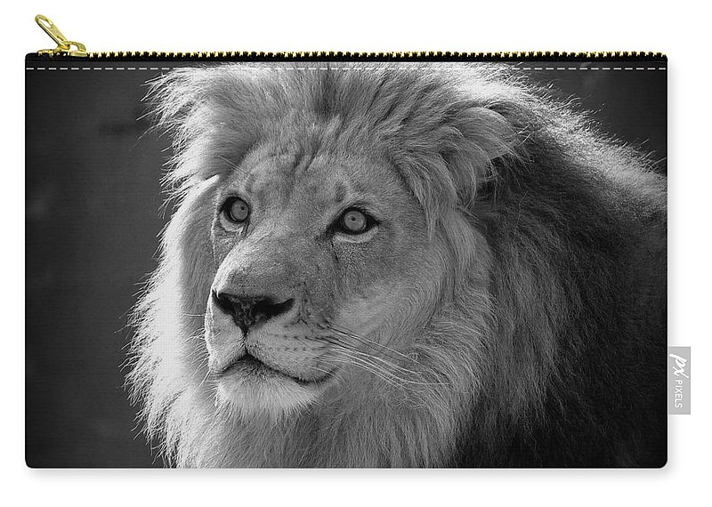 Lion Carry-all Pouch featuring the photograph In The Shadows #2 by Lisa L Silva