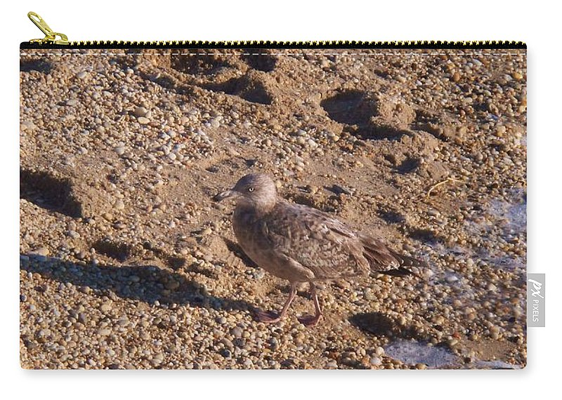 Gravel Carry-all Pouch featuring the photograph In The Stone Surf Gravel Cape May Nj by Eric Schiabor