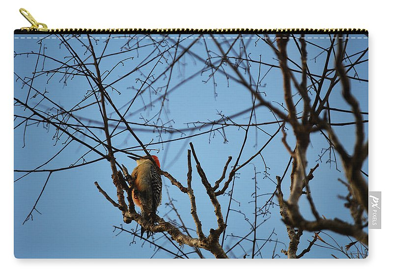 Florida Carry-all Pouch featuring the photograph In The Trees by Linda Kerkau