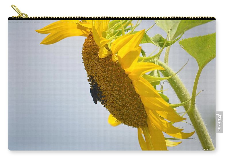 In The Wind - Sunflower Carry-all Pouch featuring the photograph In The Wind - Sunflower by Maria Urso