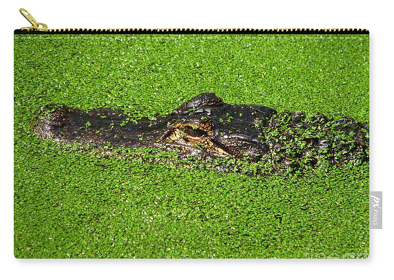 Art For The Wall...patzer Photography Carry-all Pouch featuring the photograph Incognito by Greg Patzer