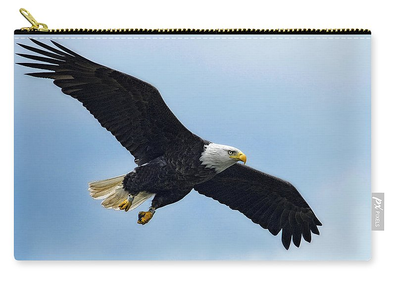 Eagle Carry-all Pouch featuring the photograph Incoming by Claudia Kuhn