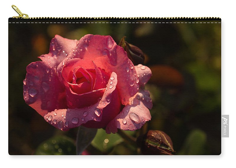 Pink Rose Carry-all Pouch featuring the photograph Inner Glow In Pink by Georgia Mizuleva