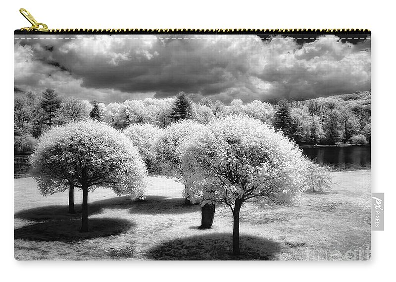 Ir Carry-all Pouch featuring the photograph Innisfree Garden by Claudia Kuhn
