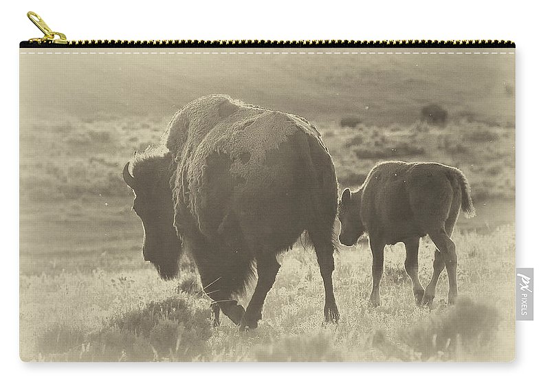 Buffalo Carry-all Pouch featuring the photograph Into The Sunset by Elaine Haberland