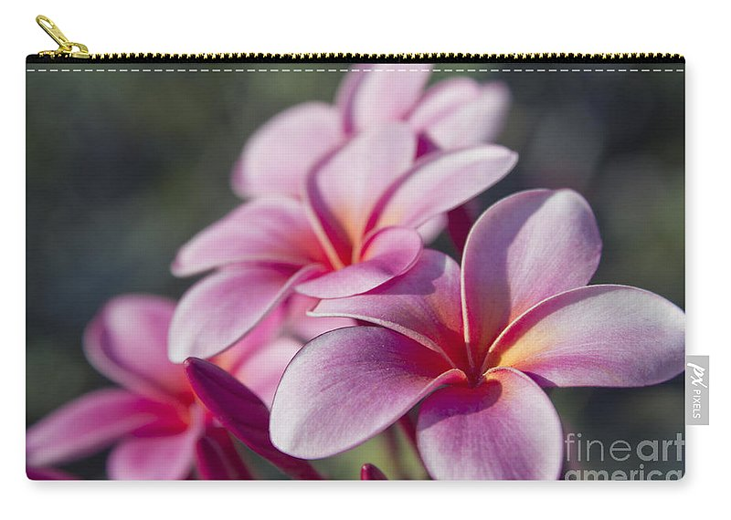 Aloha Carry-all Pouch featuring the photograph intoxicated by Love by Sharon Mau