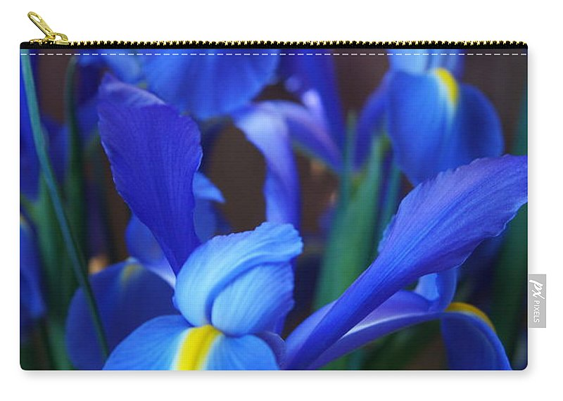 Iris Carry-all Pouch featuring the photograph Iris 2 by Megan Cohen
