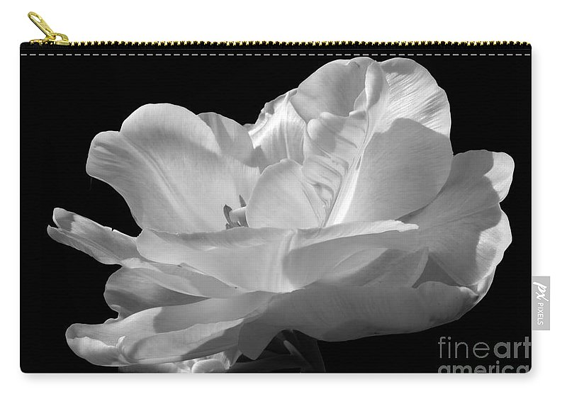 Tulip Carry-all Pouch featuring the photograph Isolated White Tulip by Darleen Stry
