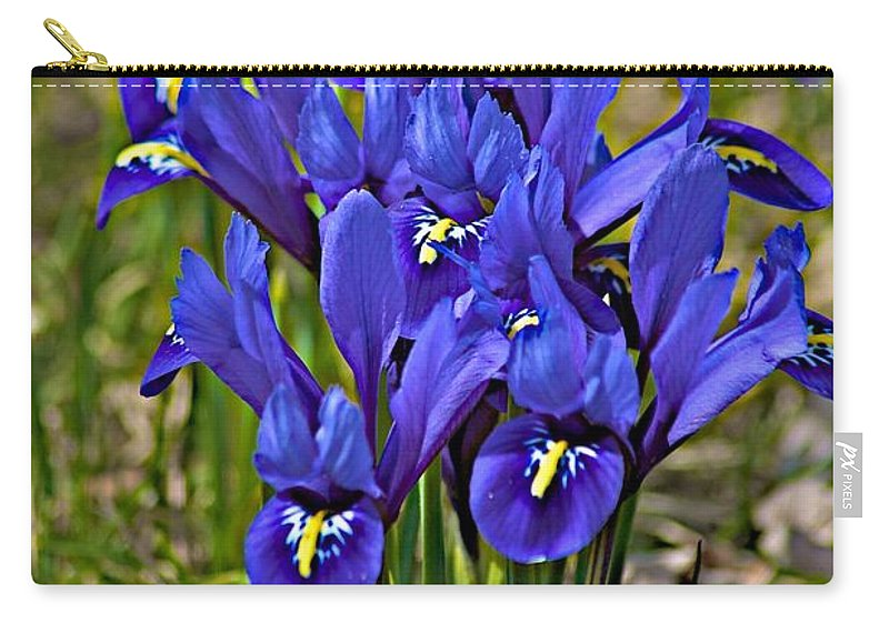 April Carry-all Pouch featuring the photograph Ithaca Spring by Joseph Yarbrough