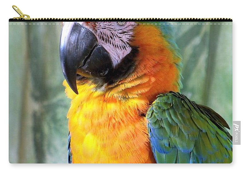 Exotic Birds Carry-all Pouch featuring the photograph It's A Jolly Good Day by Lingfai Leung