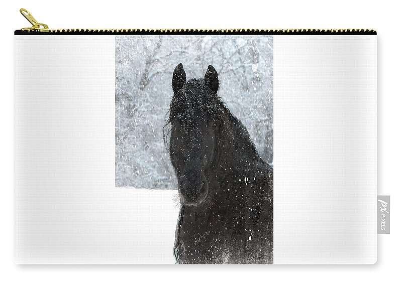 Friesian Horses Carry-all Pouch featuring the photograph It's Friesian out here by Fran J Scott