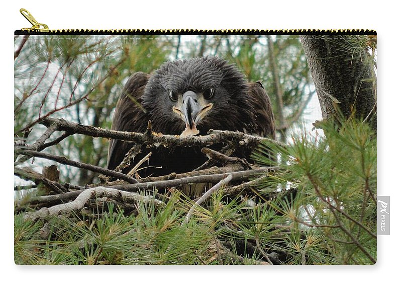 Eagle Carry-all Pouch featuring the photograph It's Mine by Bonfire Photography