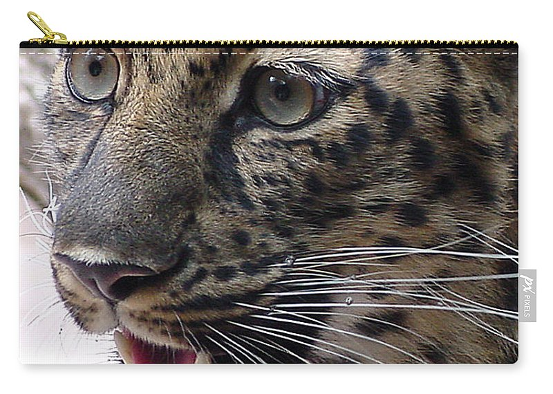 Jaguar Carry-all Pouch featuring the photograph Jaguar-09499 by Gary Gingrich Galleries