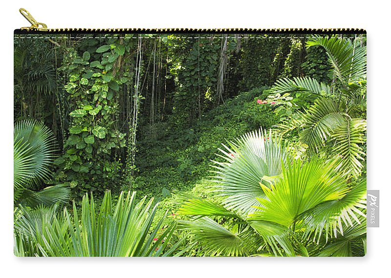 Ferns Carry-all Pouch featuring the photograph Jamaican Jungle by Timothy Hacker