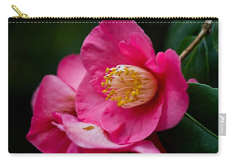 Camellia Carry-all Pouch featuring the photograph Japanese Camellia-the Official State Flower Of Alabama by Eti Reid