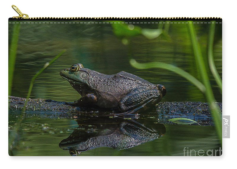 Landscape Carry-all Pouch featuring the photograph Jeremiah Was A Bullfrog by Cheryl Baxter