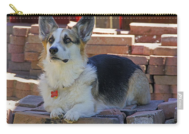Johnny Carry-all Pouch featuring the photograph Johnny The Corgi On The Bricks by Mick Anderson
