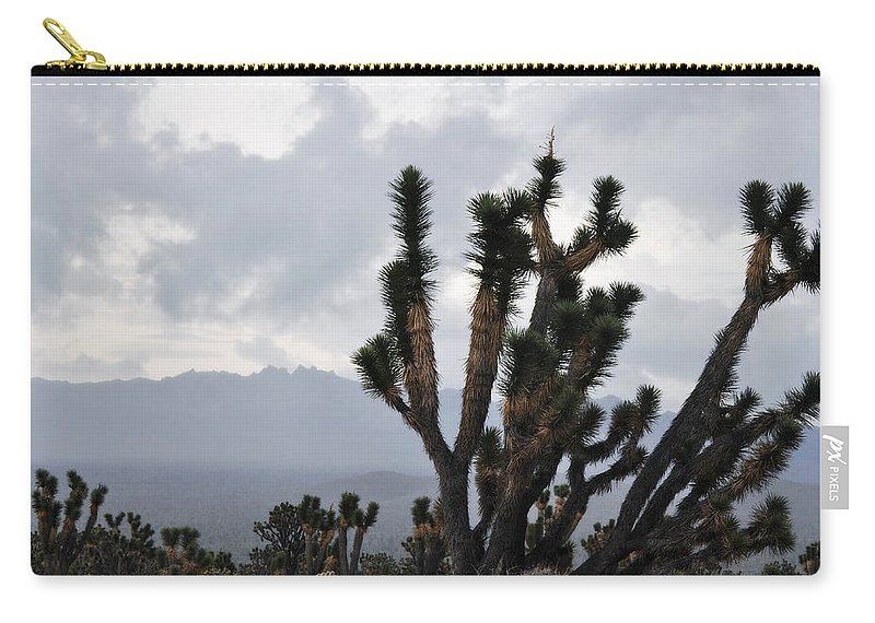 Joshua Tree Carry-all Pouch featuring the photograph Joshua Tree Forest Ivanpah Valley by Kyle Hanson
