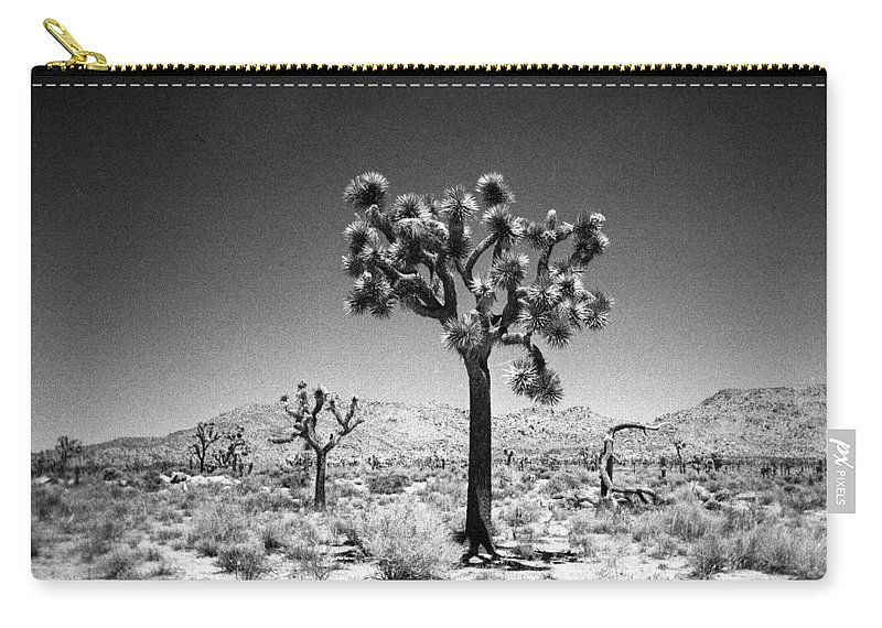 Joshua Tree Carry-all Pouch featuring the photograph Joshua Tree Holga 1 by Alex Snay
