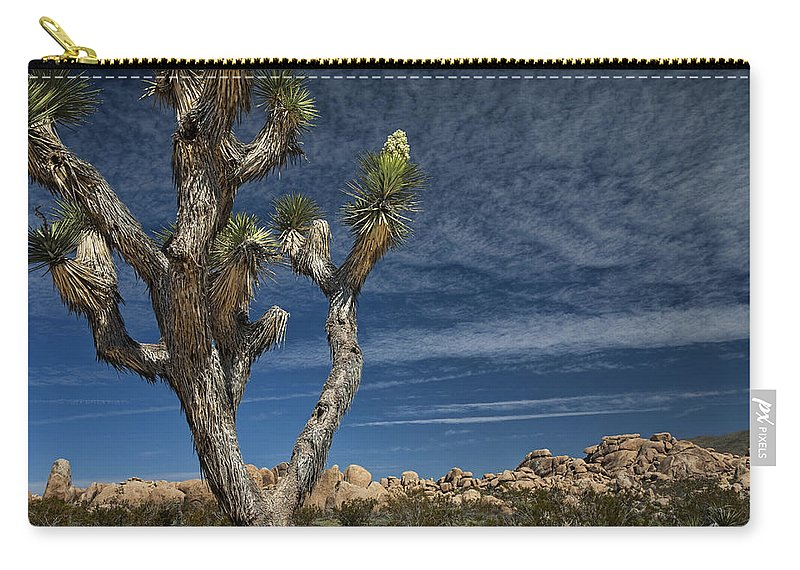 Art Carry-all Pouch featuring the photograph Joshua Tree In Joshua Tree National Park No. 279 by Randall Nyhof