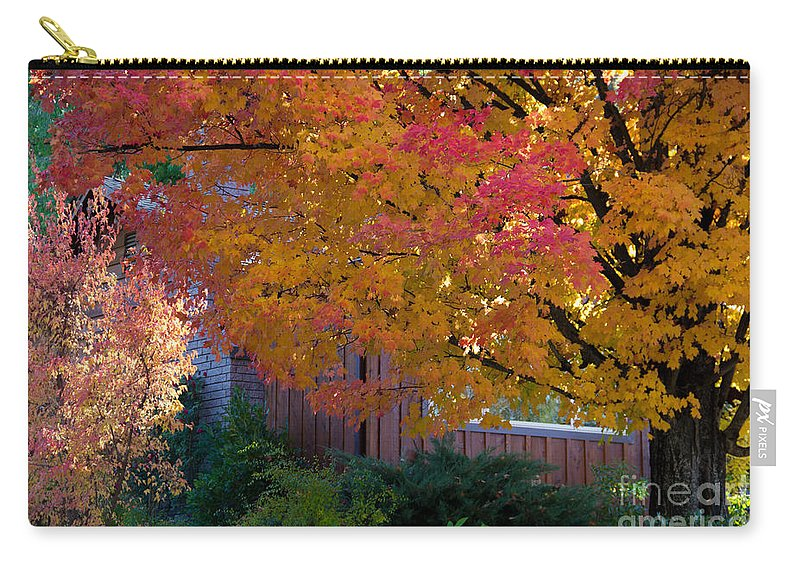 Judge Thieler Tree Carry-all Pouch featuring the photograph Judge Thieler Sugar Maple, Quincy California by Tirza Roring