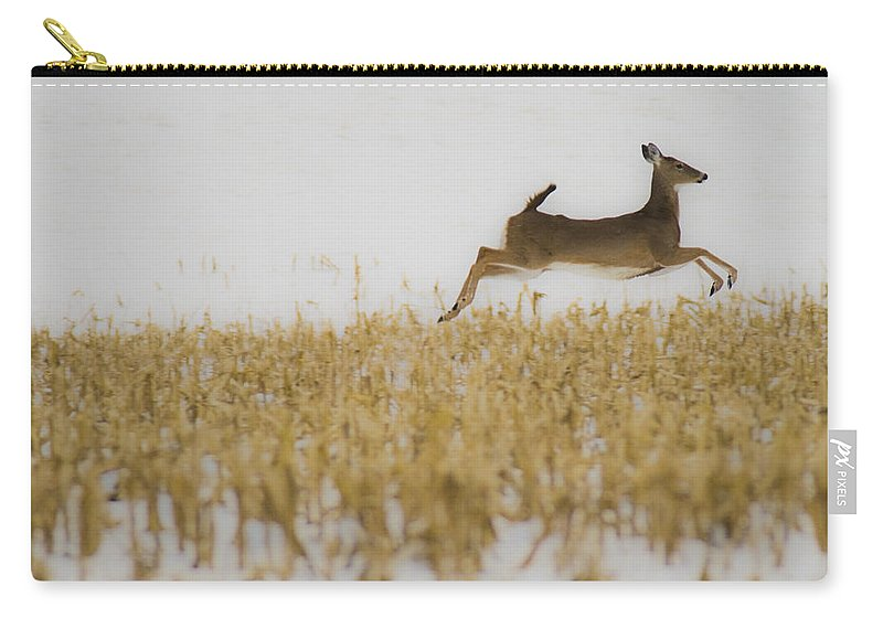 Doe Carry-all Pouch featuring the photograph Jumping Doe In Corn Field by Crystal Heitzman Renskers