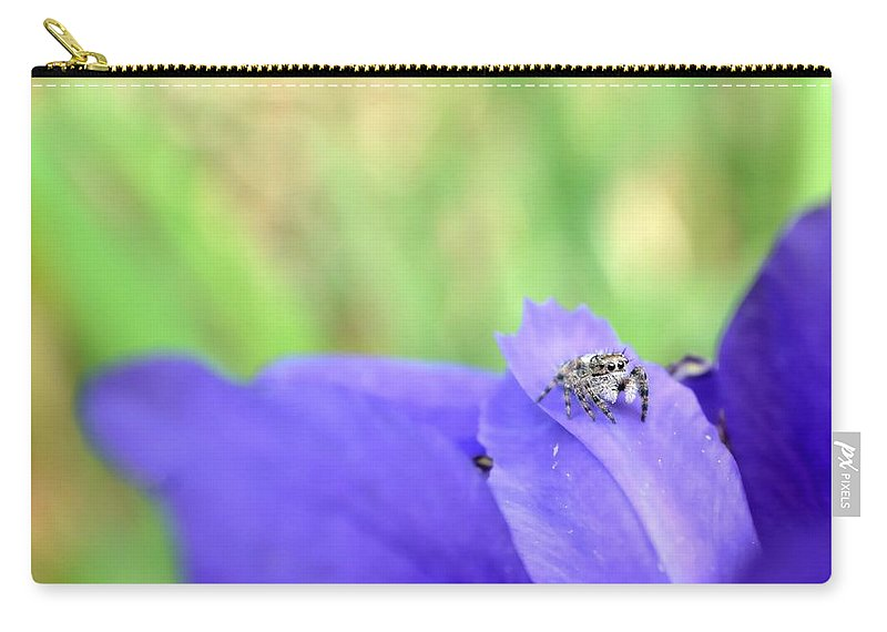 Spider Carry-all Pouch featuring the photograph Jumping Spider by Deena Stoddard