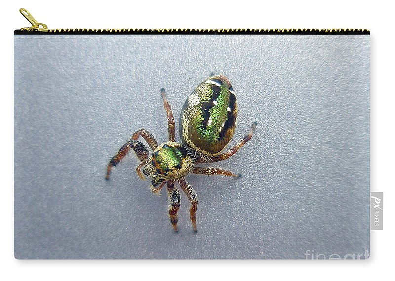 Jumping Carry-all Pouch featuring the photograph Jumping Spider - Green Salticidae by Mother Nature