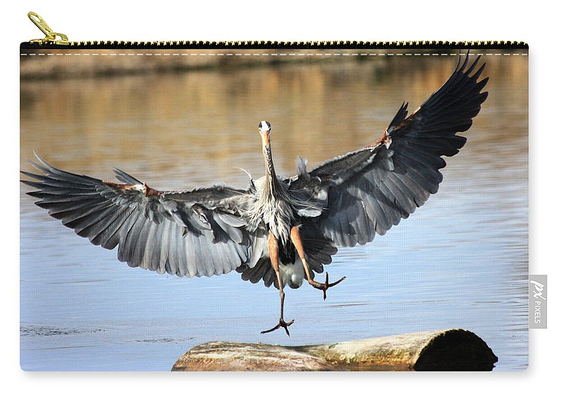 Great Blue Heron Carry-all Pouch featuring the photograph Jumping For Joy by Shane Bechler