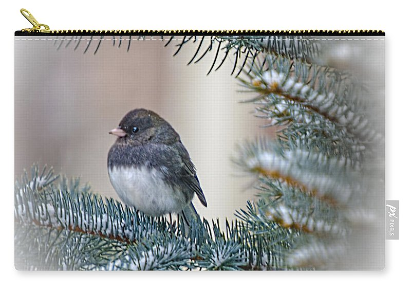 Junco Carry-all Pouch featuring the photograph Junco In Pine by LeeAnn McLaneGoetz McLaneGoetzStudioLLCcom