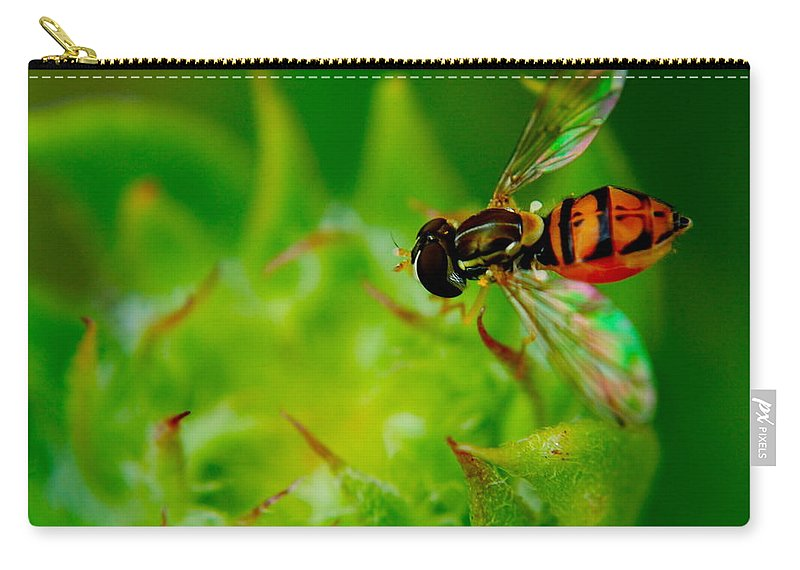 Bee Carry-all Pouch featuring the photograph Just Beecause by Frozen in Time Fine Art Photography