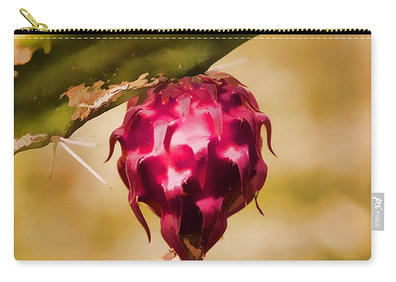 Flowering Cactus Carry-all Pouch featuring the photograph Just Haging Around by Scott Campbell