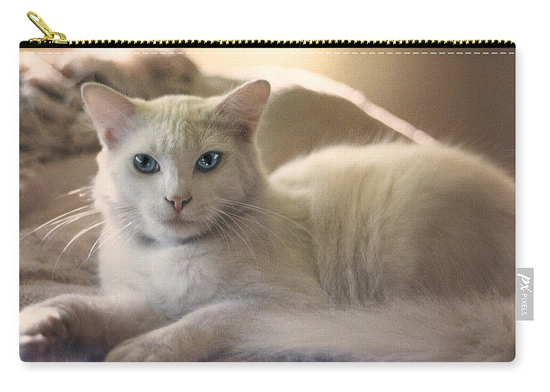 Cat Carry-all Pouch featuring the photograph Kaine by Leah Delano