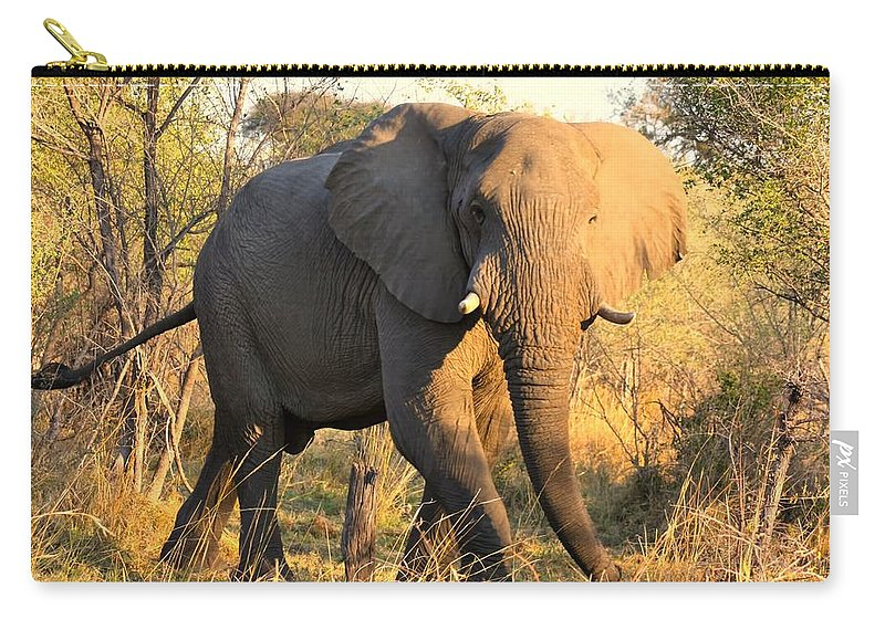 Elephants Carry-all Pouch featuring the photograph Kalahari Elephant by Amanda Stadther