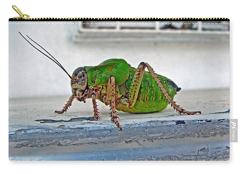 Bush Crickets Carry-all Pouch featuring the photograph Katydid by Taiche Acrylic Art