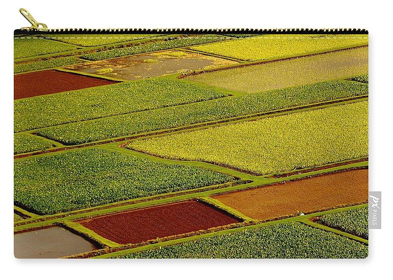 Taro Fields Carry-all Pouch featuring the photograph Kauai Taro Fields by Richard Cheski