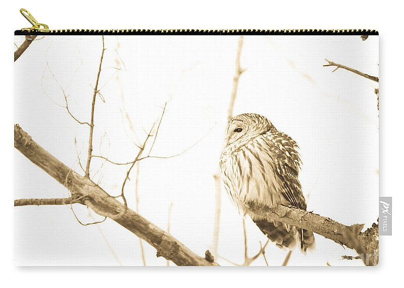 Owls Carry-all Pouch featuring the photograph Keeping Watch by Cheryl Baxter