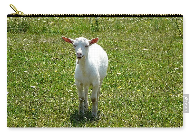 Kid Carry-all Pouch featuring the photograph Kid Goat by Valerie Ornstein