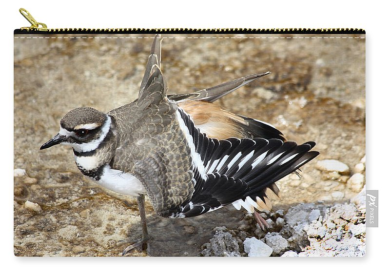 Killdeer Carry-all Pouch featuring the photograph Killdeer Fakeout by Shane Bechler