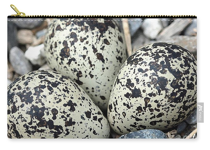 Mccombie Carry-all Pouch featuring the painting Killdeer Nest by J McCombie