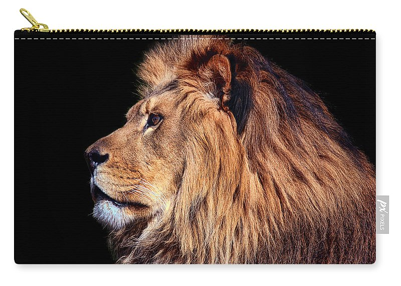 Lion Carry-all Pouch featuring the photograph King Of Beast by Marcia Colelli