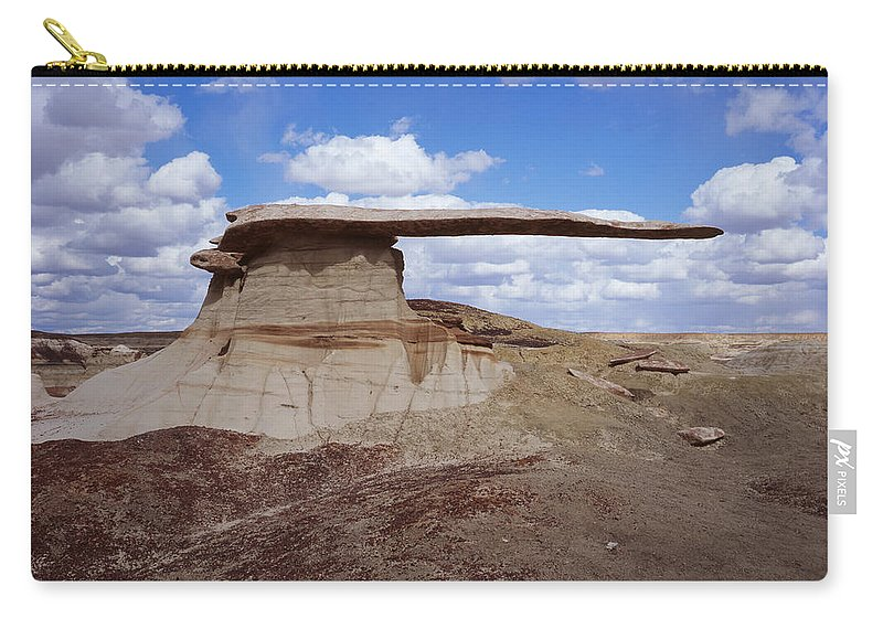 Nature Photography Carry-all Pouch featuring the photograph King Of Wings by Tom Daniel