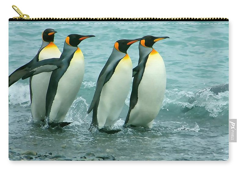 King Penguins Going To Sea Carry-all Pouch featuring the photograph King Penguins Going To Sea by Amanda Stadther