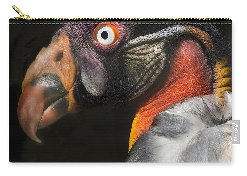 Vulture Carry-all Pouch featuring the photograph King Vulture by James Ekstrom