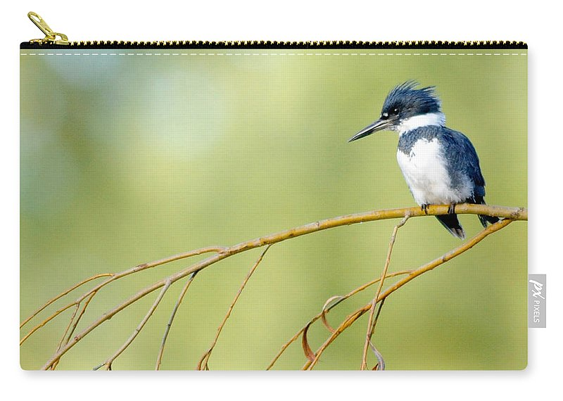 Black Knight Holdings � 2011 Carry-all Pouch featuring the photograph Kingfisher On A Willow by Randy Giesbrecht