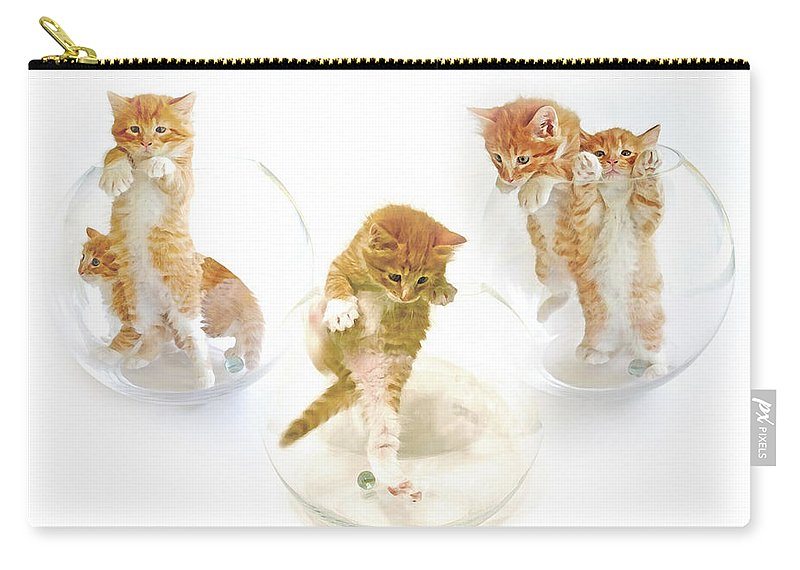 Kittens Carry-all Pouch featuring the photograph Kittens In Bowl by Olivia Novak